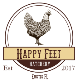 Happy Feet Hatchery