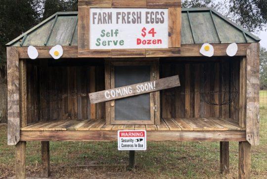 Farm Fresh Egg Stand