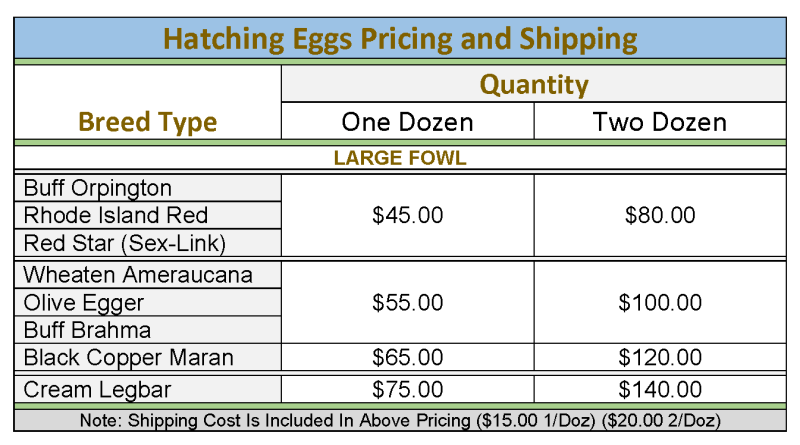 Hatching Egg Prices