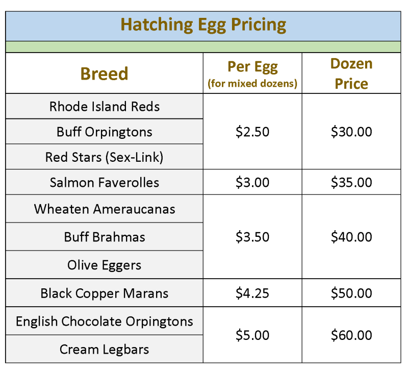Hatching Egg pricing