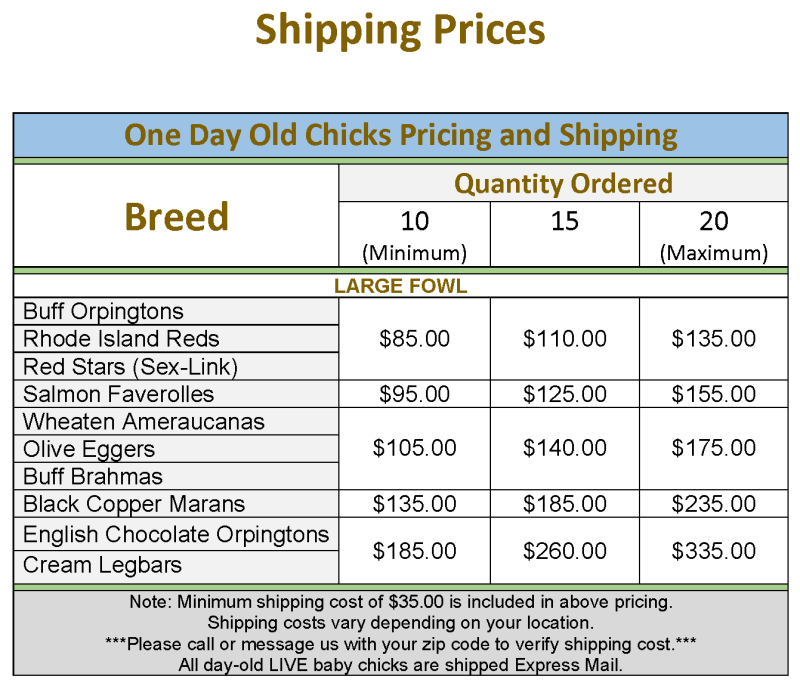 Happy Feet Hatchery Shipping Prices